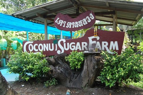 Coconut Sugar Farm